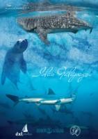 Galapagos-1-141x200 - copia